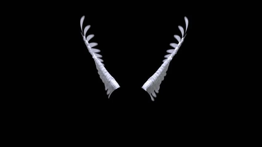 Falling Feathers Wallpaper Angel Wings Animation With Luma Matte Stock Footage Video