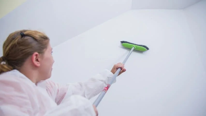 Clean Walls Before Painting | Zigmarks.Com