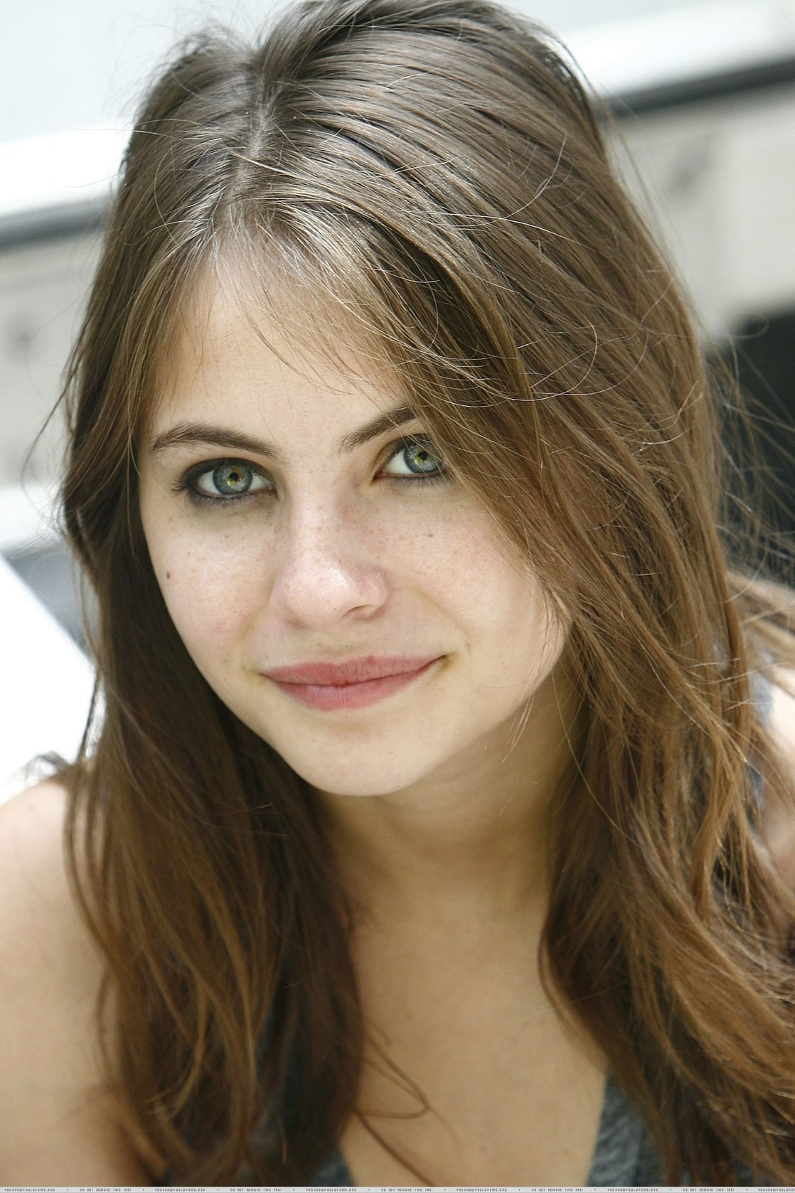 Tiger Girl Wallpaper Picture Of Willa Holland
