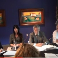 Angry Art Board Member Loses Temper & Attempts to Cut Off Public Comment