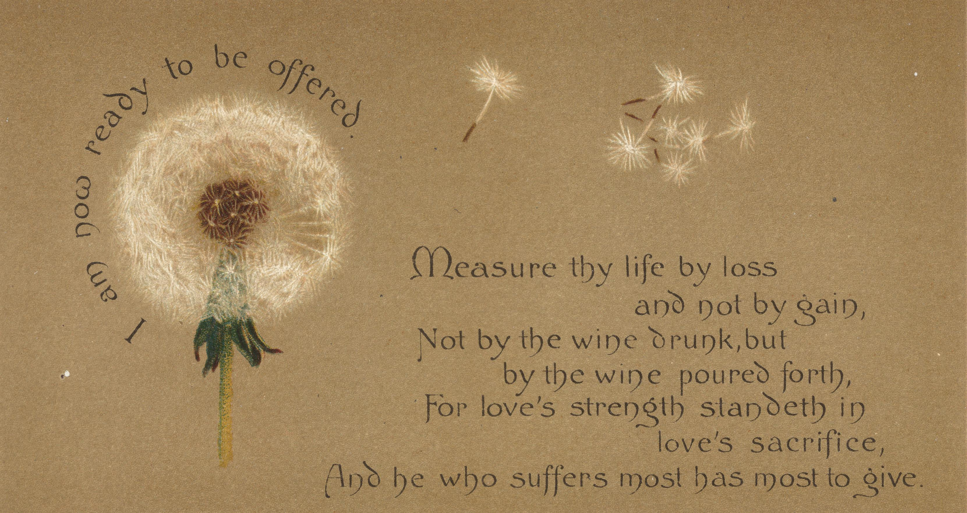 The Yellow Wallpaper Symbolism Quotes The Lesson Of The Dandelion Lilias Trotter