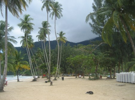 Maracas Bay in Trinidad and Tobago