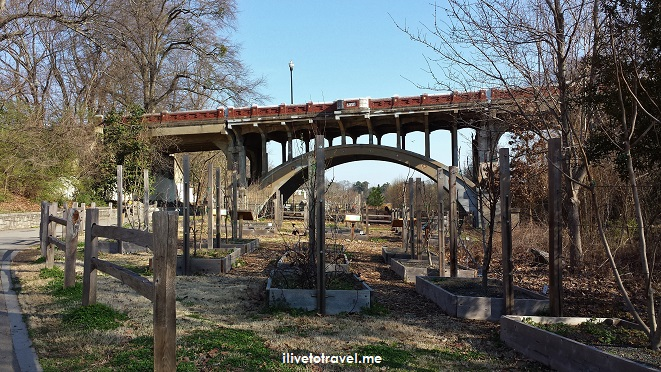 Piedmont Park, train, railroad line, garden, Atlanta, Midtown, photo