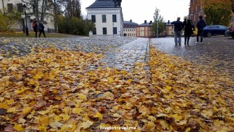 Sweden, Uppsala, Samsung Galaxy S7, photo, travel, explore