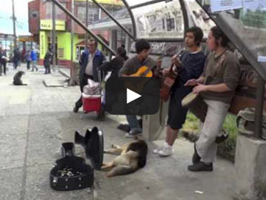 Ancud, Chile Street Musicians