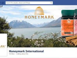 Social Media Customization Honeymark