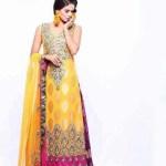 Pakistani Bridal Dresses 2015 4