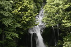 竜頭の滝(りゅうずのたき)の画像
