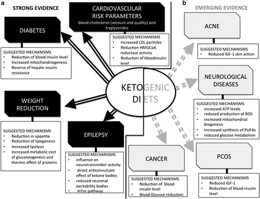 What is \u201cNutritional Ketosis\u201d? Nutritional Ketosis
