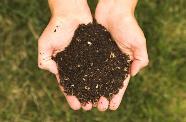free compost to Newton Residents ILoveNewton.com