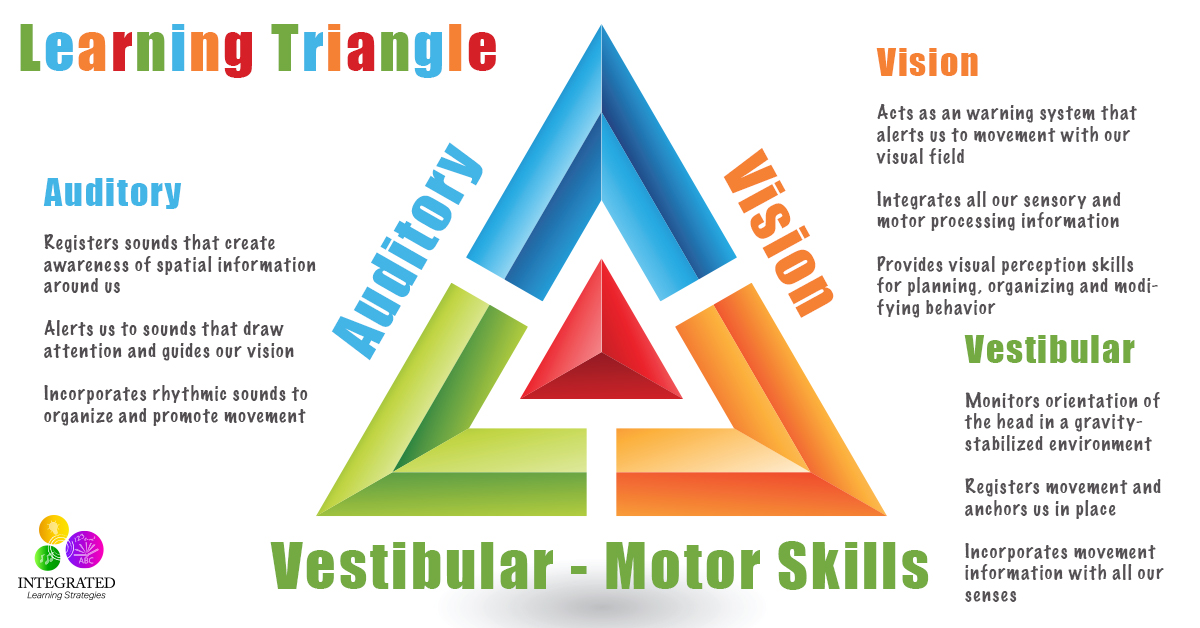 LEARNING TRIANGLE Without the Vestibular, Visual and Auditory