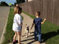 Walking the mutt.