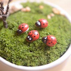 Small Of Diy Mini Garden
