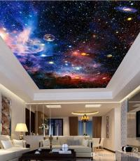 Ceiling Murals Wallpaper Night Sky  Blog Avie