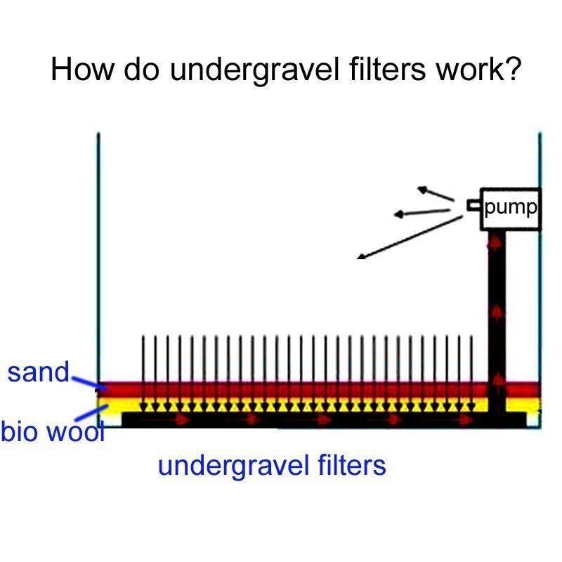 2019 Of 7*14CM Undergravel Filters Bottom Plates For Aquarium Fish
