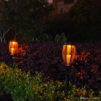 Patio Torch Lights