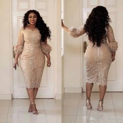 The Size Cocktail Dresses Jewel Neck Applique Sleeve Zippertea Length Prom Dress Champagne Woman Party Dress 2018 Arab Size Cocktail Dresses Jewel Neck Applique Sleeve 2018 Arab