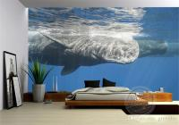 3d Ocean Wallpaper Whale Photo Wallpaper Natural Scenery ...