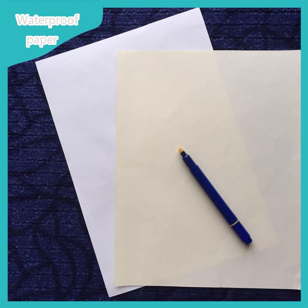 resume paper size in cm