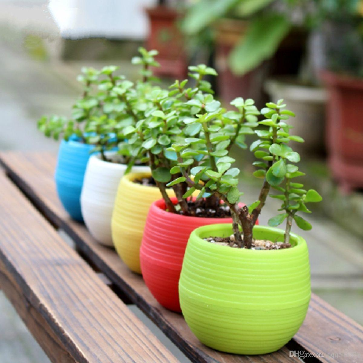 Colores De Macetas 5 Colores Macetas Mini Maceta Unbreakable Plastic Nursery Pots Adorable Afforest Aid Good Helper Use Para Jardín