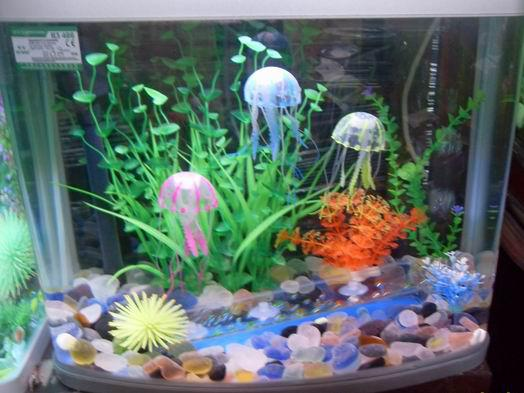 Aquarium decorations cheap cheap aquarium decorations for Aquarium decoration ideas cheap