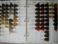 hair color swatch book