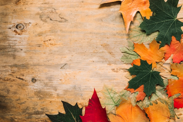 Fall Colors Desktop Wallpaper Autumn Fall Leaves On Wooden Background Photo Free Download
