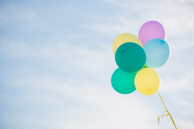 Bunch of pastel color balloons floating in the air Photo Free Download