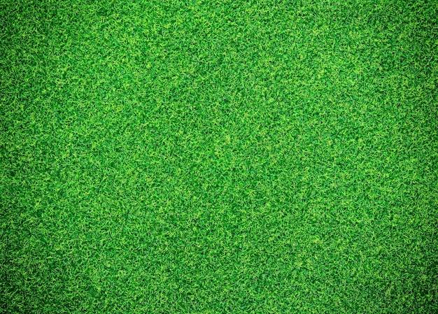 Green Grass Background Photo Premium Download