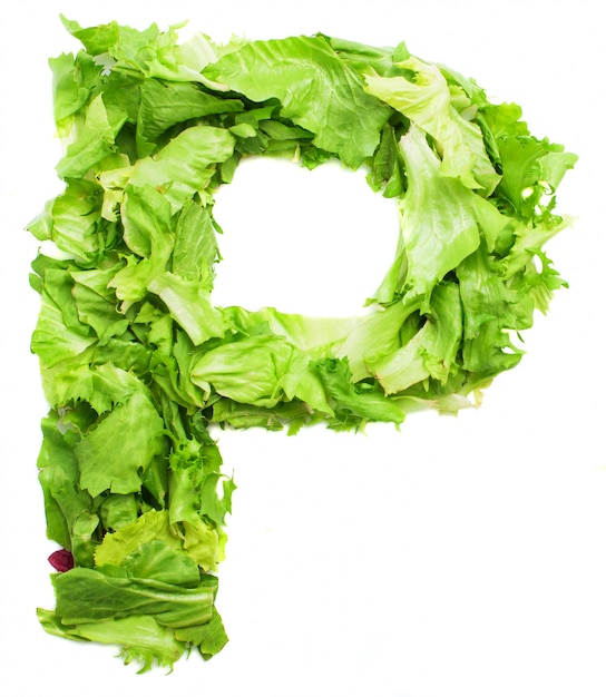 Letter p with crunchy lettuce Photo Free Download - p&l spreadsheet template