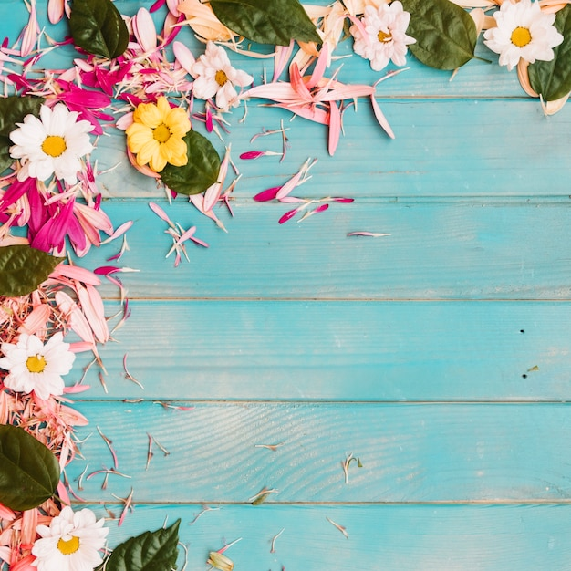Natural flowers background Photo Free Download