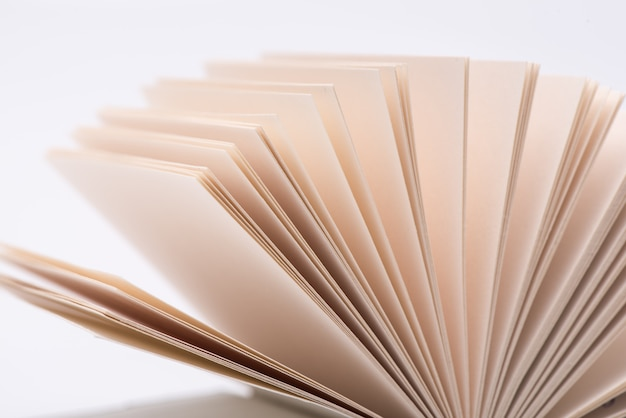 Open book pages open book pages on white background, close-up