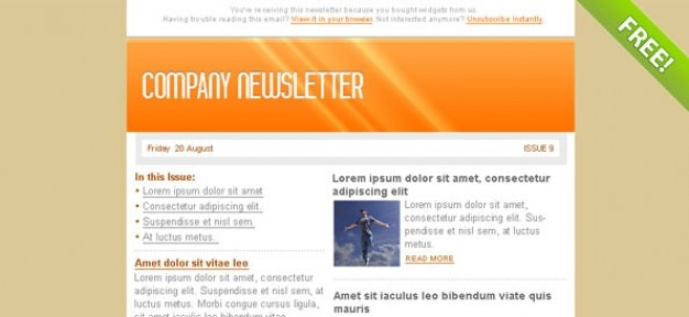 Orange Email Marketing Newsletter Template PSD file Free Download - company newsletter template free