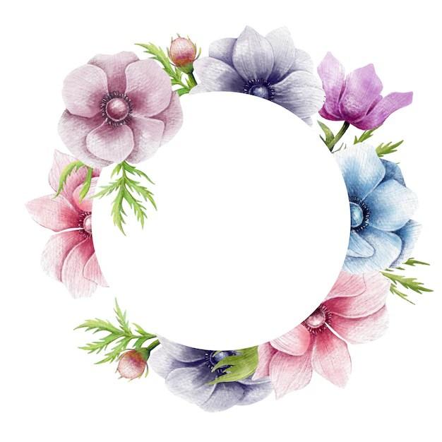Beautiful anemone flowers circle border Vector Premium Download