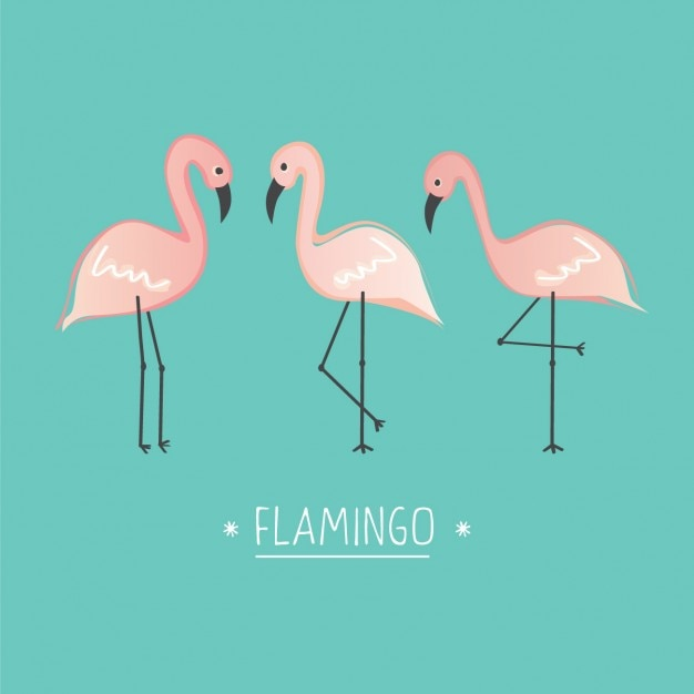 Cute Cartoon Bird Wallpapers Coloured Flamingos Background Vector Free Download