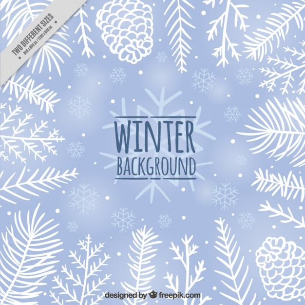 Cute winter background with pine cones and hand drawn