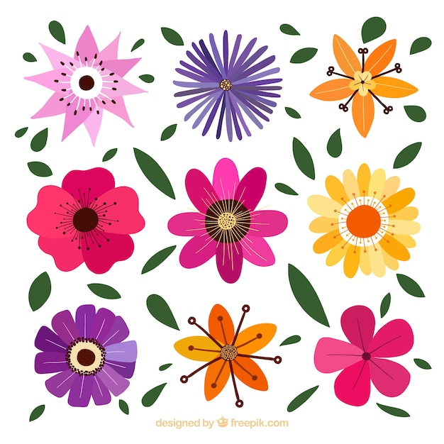 Decorative flowers with different designs Vector