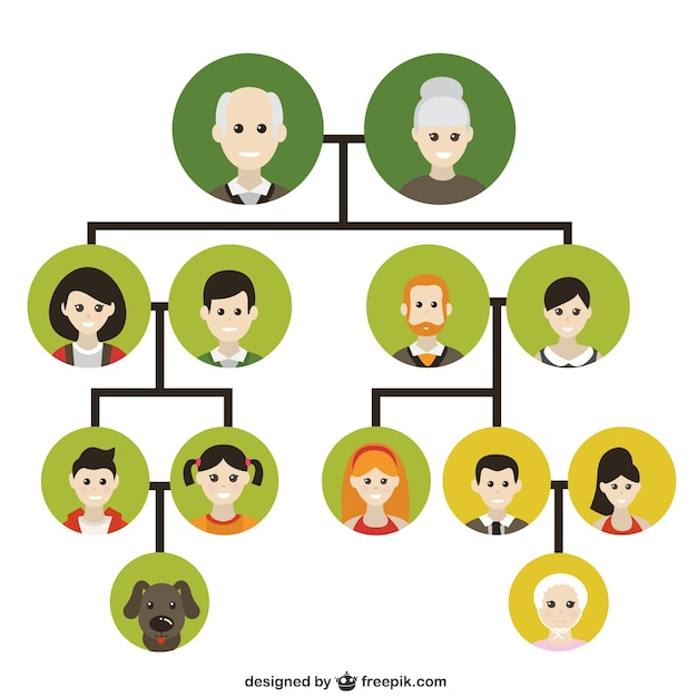 Family tree icons Vector Free Download
