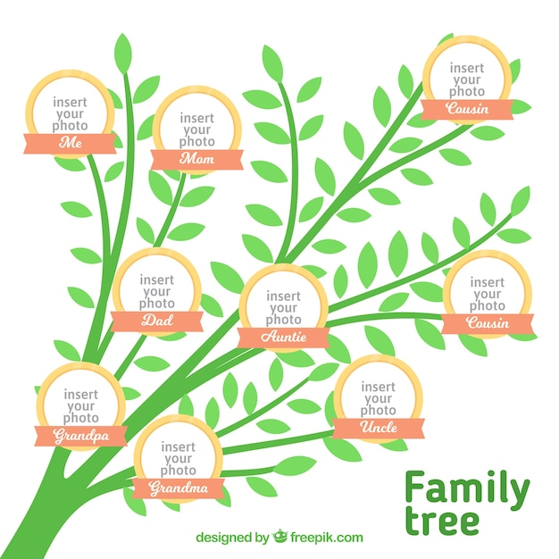 Genealogical tree of green color Vector Free Download