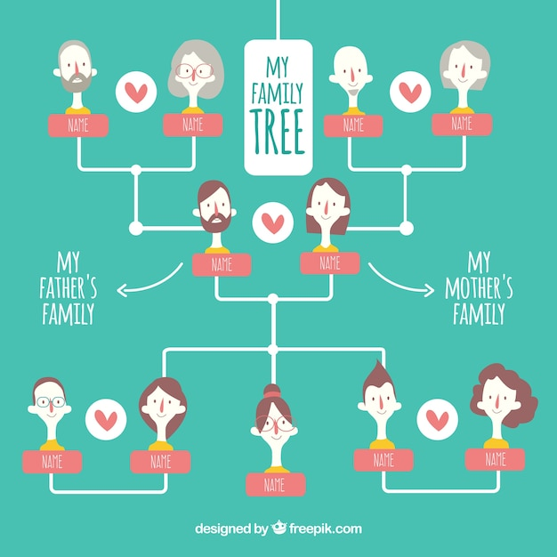 Great family tree with color details Stock Images Page Everypixel