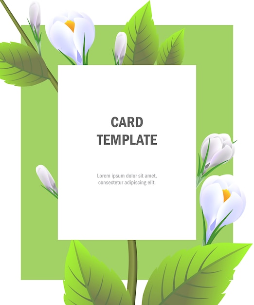 Greeting card template with white crocuses on green frame party
