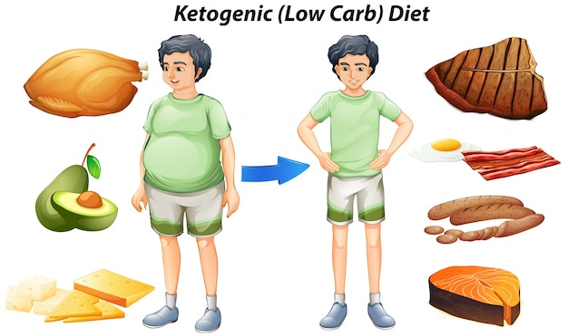 Ketogenic diet chart with different types of food Vector Free Download