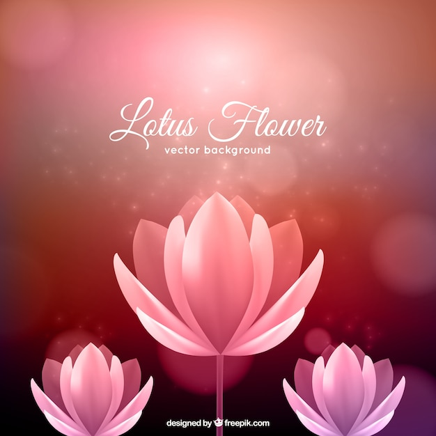 Luxury 3d Wallpaper Lotus Flower Background Vector Free Download
