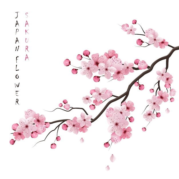 Cherry Blossom Tree Vectors, Photos and PSD files Free Download - cherry blossom animated