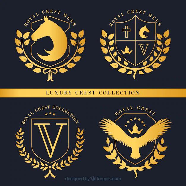 icone cv design
