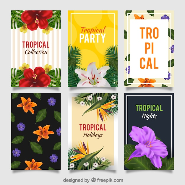 Set of tropical party invitations Vector Free Download