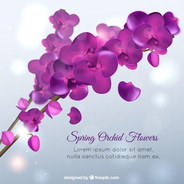 Violet Flower Vectors, Photos And Psd Files | Free Download