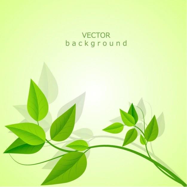 Falling Leaves Wallpaper Free Download Vector Background Leaves Vector Free Download