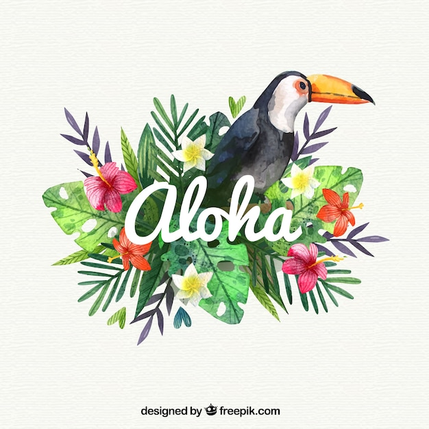 Exotic Animal Wallpaper Water Color Pelican Aloha Background Vector Free Download
