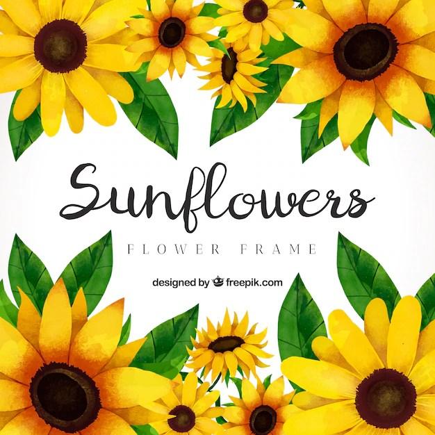 Fall Sunshine Wallpaper Girasol Fotos Y Vectores Gratis